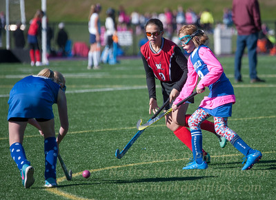 Play 4 The Cure 2016 at Ethel Walker School