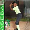 Gators _0005_8537 Andrew Full