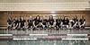 EHS State Swim (9)