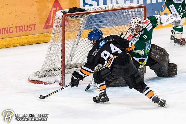 ZSHL Final: Greenhorns Menzingen - HM Herti - 6:9
