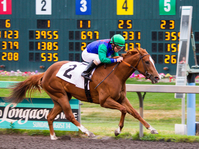 EmeraldDowns 01 160514