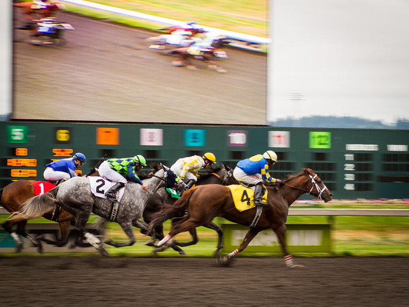 EmeraldDowns 31 160514