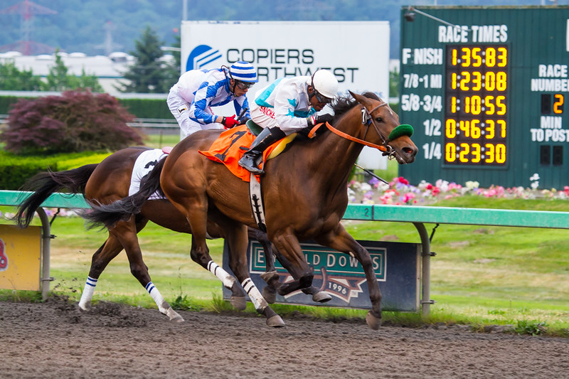 EmeraldDowns 22 160514
