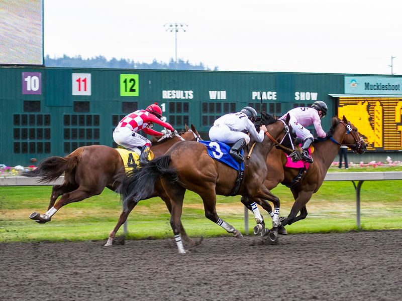 EmeraldDowns 42 160514