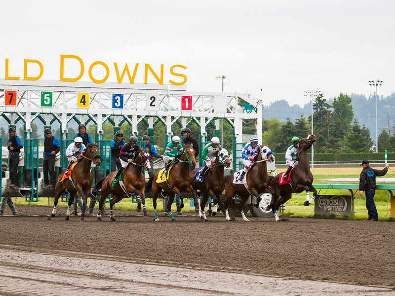 EmeraldDowns 13 160514