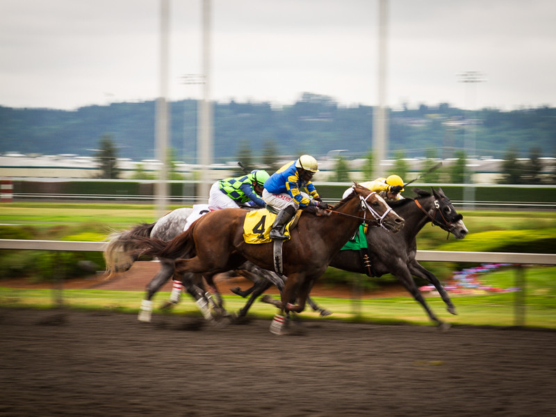EmeraldDowns 26 160514