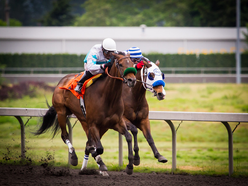 EmeraldDowns 20 160514