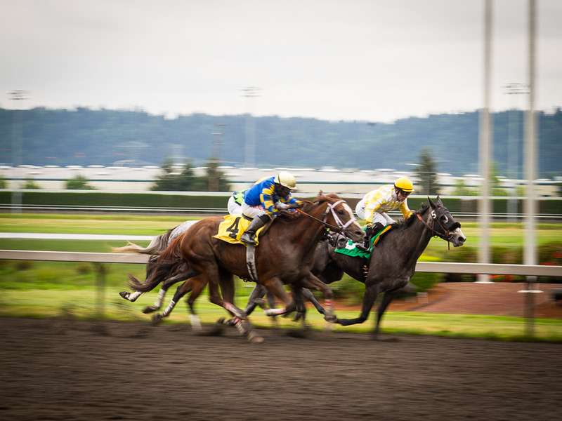 EmeraldDowns 25 160514