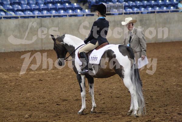 2010.06.09 - World Pinto Horse Show