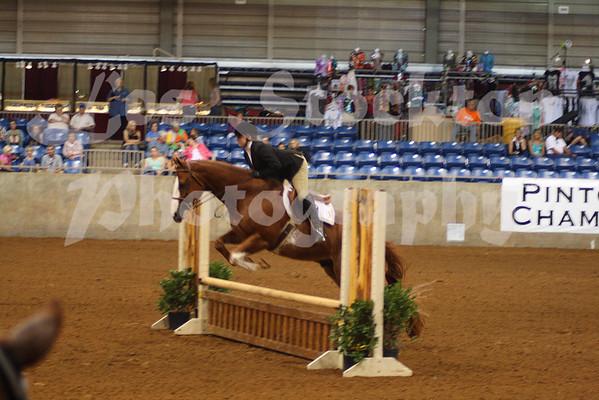 2010.06.13 - World Pinto Horse Show
