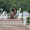 BRV Charity Horse show-9362