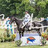 BRV Charity Horse show-9074