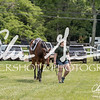 BRV Charity Horse show-8636