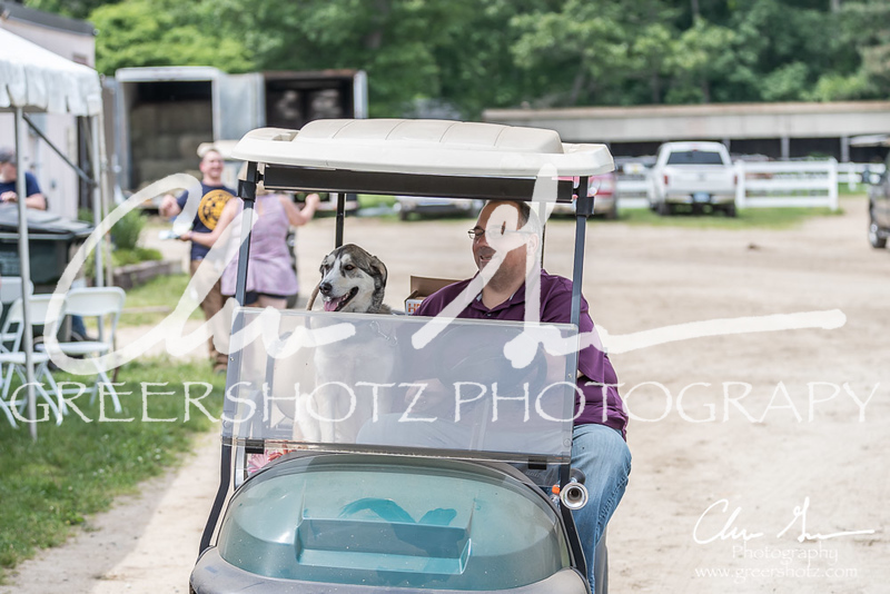 BRV Charity Horse show-9069