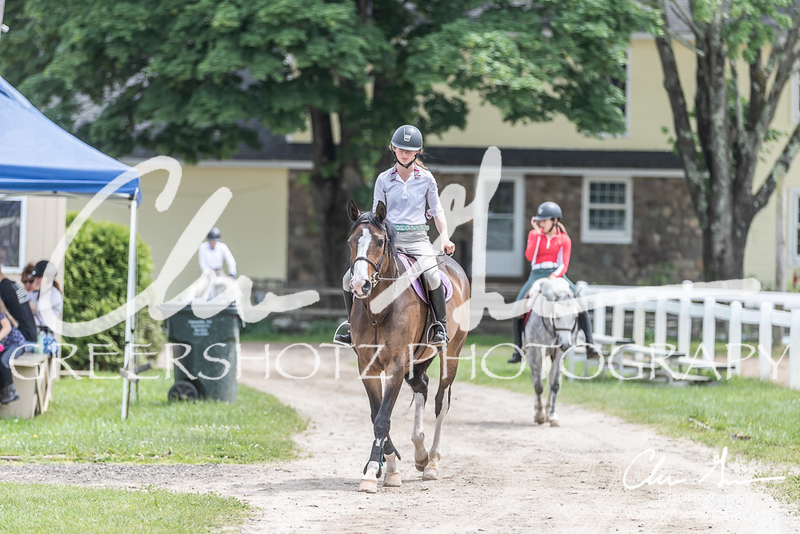 BRV Charity Horse show-9089