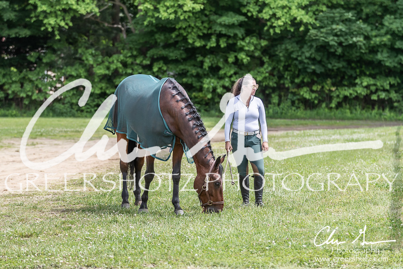BRV Charity Horse show-9167
