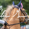 BRV Charity Horse show-8757