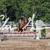 BRV Charity Horse show-9346