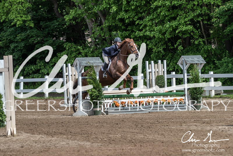 BRV Charity Horse show-9177