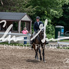 BRV Charity Horse show-8911