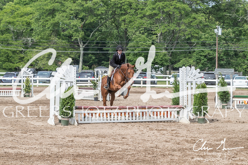 BRV Charity Horse show-9303