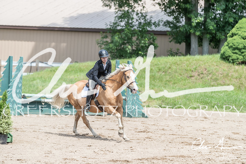 BRV Charity Horse show-8514