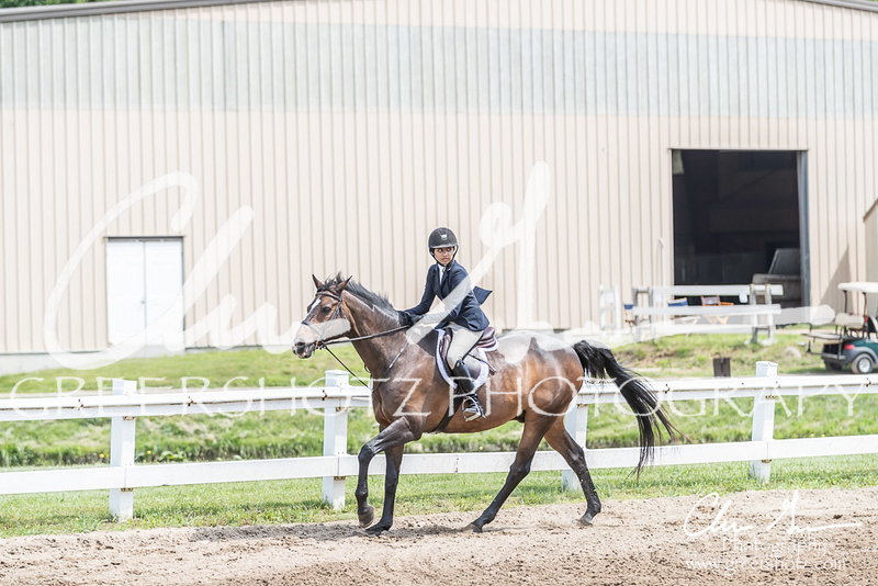 BRV Charity Horse show-8531
