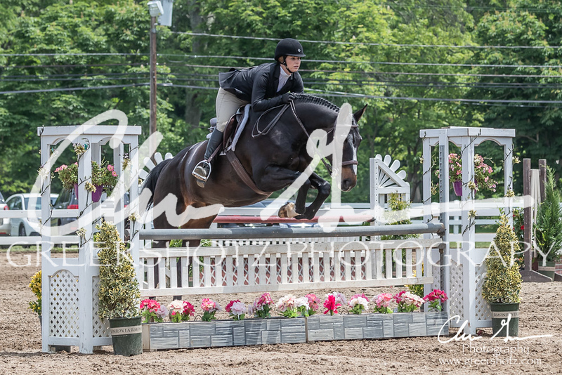 BRV Charity Horse show-8824