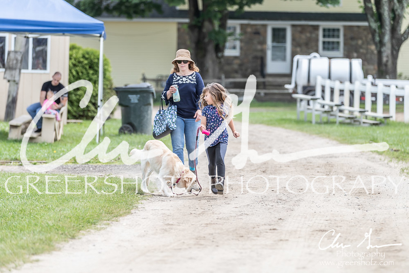 BRV Charity Horse show-9124