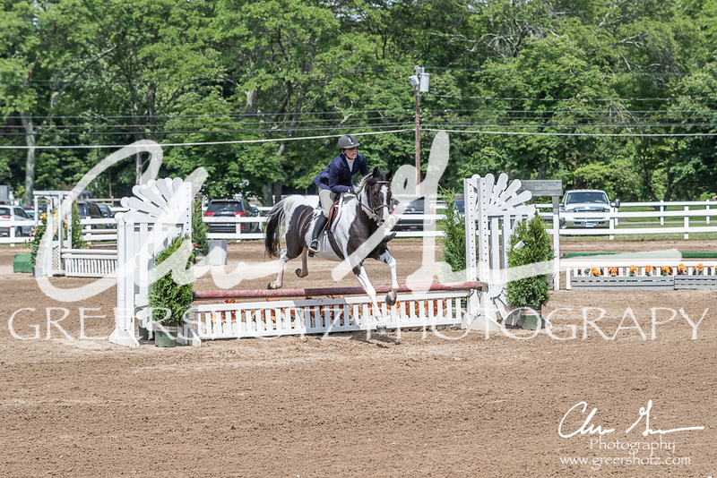 BRV Charity Horse show-9199