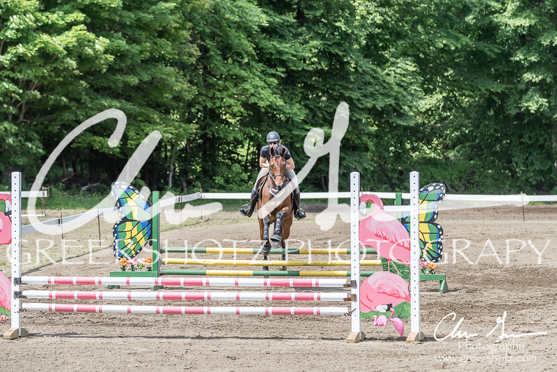 BRV Charity Horse show-8481