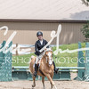 BRV Charity Horse show-8614