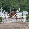 BRV Charity Horse show-9358