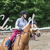 BRV Charity Horse show-8773