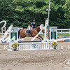 BRV Charity Horse show-8726