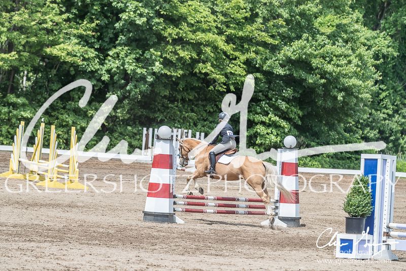 BRV Charity Horse show-8503