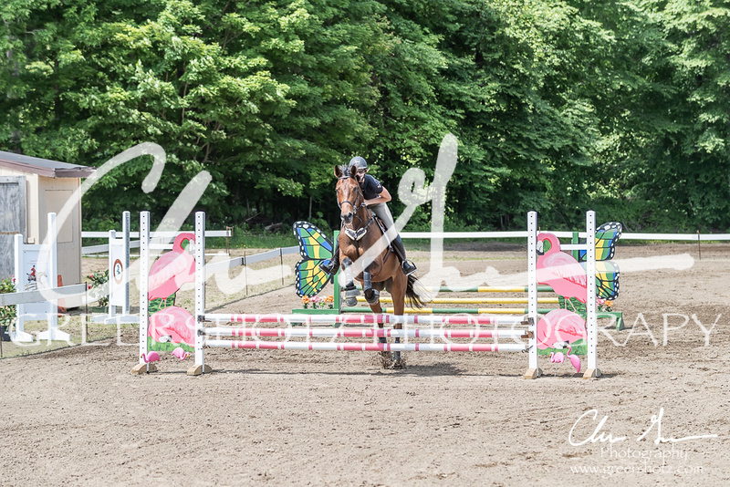 BRV Charity Horse show-8482