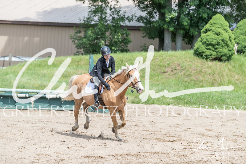 BRV Charity Horse show-8517