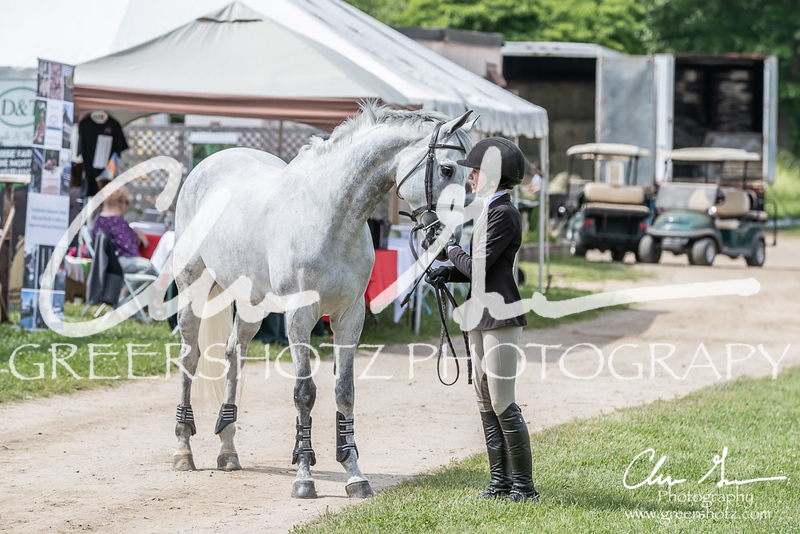 BRV Charity Horse show-9185