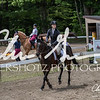 BRV Charity Horse show-8720