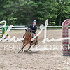 BRV Charity Horse show-9009