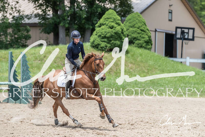 BRV Charity Horse show-8942