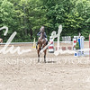 BRV Charity Horse show-8802