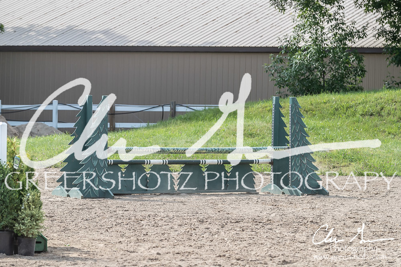 BRV Charity Horse show-9284