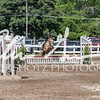BRV Charity Horse show-9243
