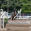 BRV Charity Horse show-9254