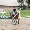 BRV Charity Horse show-8731