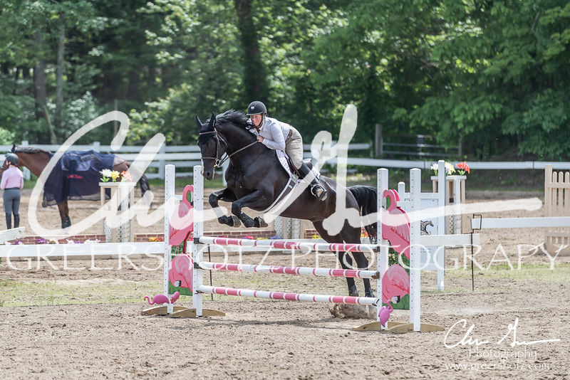 BRV Charity Horse show-9053