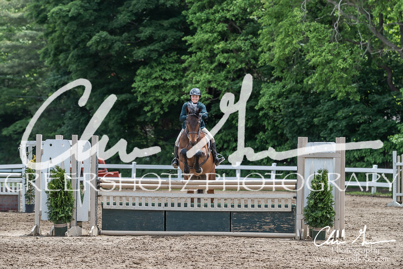 BRV Charity Horse show-8798
