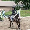 BRV Charity Horse show-8650
